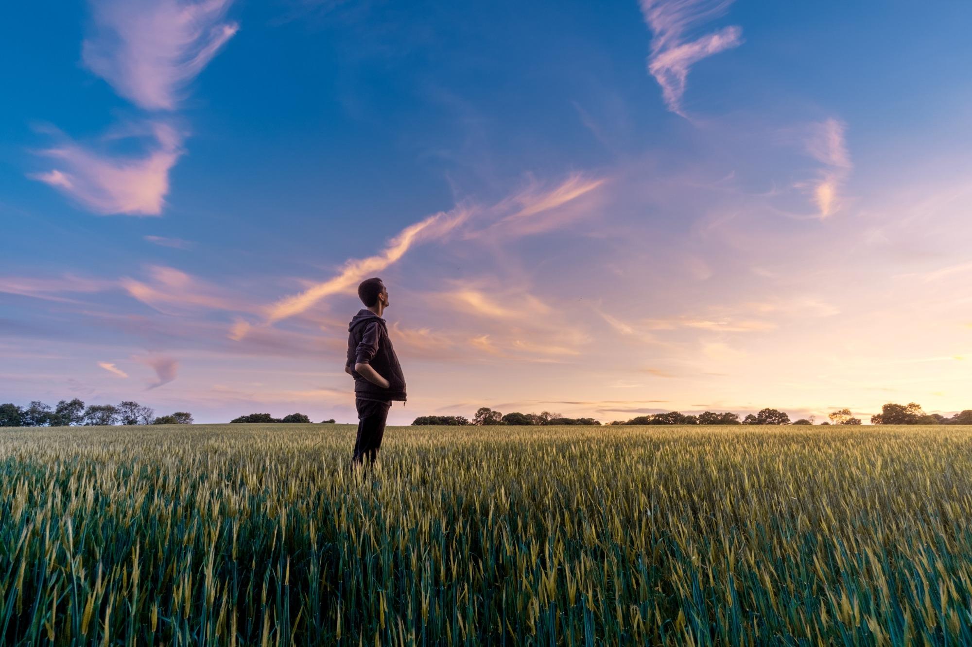 Marketing für Landwirte, Marketing für Market Gardening, Marketing für Direktvermarkter, Agrarmarketing